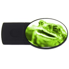 Green Frog Usb Flash Drive Oval (2 Gb)  by timelessartoncanvas