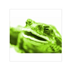 Green Frog Small Satin Scarf (Square)  by timelessartoncanvas