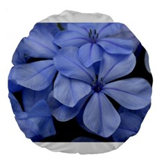 Bright Blue Flowers Large 18  Premium Flano Round Cushions by timelessartoncanvas