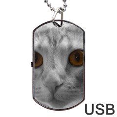 Funny Cat Dog Tag Usb Flash (two Sides)  by timelessartoncanvas