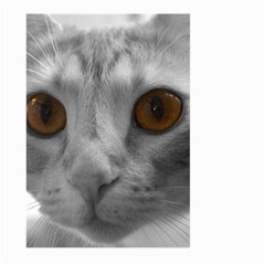 Funny Cat Large Garden Flag (two Sides) by timelessartoncanvas