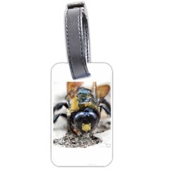 Bumble Bee 2 Luggage Tags (two Sides) by timelessartoncanvas