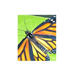 Butterfly 2 Memory Card Reader by timelessartoncanvas