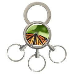 Butterfly 3 3 Ring Key Chains by timelessartoncanvas