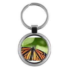 Butterfly 3 Key Chains (round)  by timelessartoncanvas