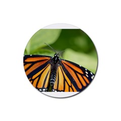 Butterfly 3 Rubber Round Coaster (4 Pack)  by timelessartoncanvas