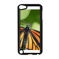 Butterfly 3 Apple Ipod Touch 5 Case (black) by timelessartoncanvas