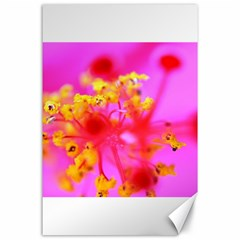Bright Pink Hibiscus 2 Canvas 24  X 36  by timelessartoncanvas