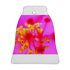 Bright Pink Hibiscus 2 Ornament (bell)