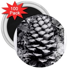 Pinecone Spiral 3  Magnets (100 Pack) by timelessartoncanvas
