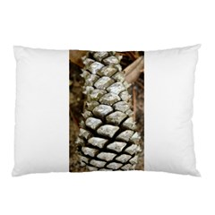 Pincone Spiral #2 Pillow Cases by timelessartoncanvas
