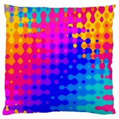 Totally Trippy Hippy Rainbow Large Flano Cushion Cases (two Sides)  by KirstenStar