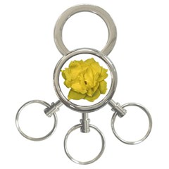 Isolated Yellow Rose Photo 3 Ring Key Chains by dflcprints