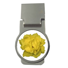 Isolated Yellow Rose Photo Money Clips (round)  by dflcprints