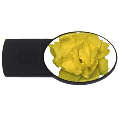 Isolated Yellow Rose Photo Usb Flash Drive Oval (2 Gb)  by dflcprints