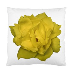 Isolated Yellow Rose Photo Standard Cushion Cases (two Sides)  by dflcprints