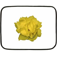 Isolated Yellow Rose Photo Fleece Blanket (mini)