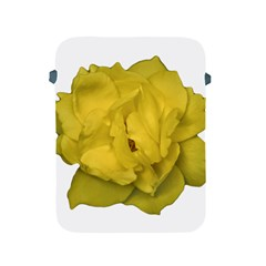 Isolated Yellow Rose Photo Apple Ipad 2/3/4 Protective Soft Cases by dflcprints