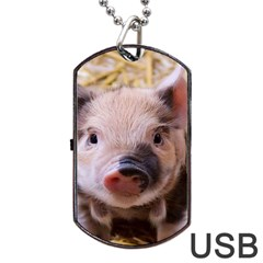 Sweet Piglet Dog Tag Usb Flash (two Sides)  by ImpressiveMoments