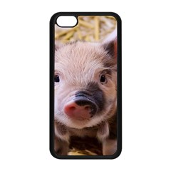 Sweet Piglet Apple Iphone 5c Seamless Case (black) by ImpressiveMoments