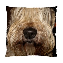 Wheaten Standard Cushion Case (One Side)  by TailWags