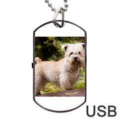 Glen Of Imaal Full wheaton Dog Tag USB Flash (Two Sides)  by TailWags