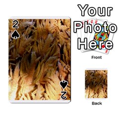 Sago Palm Playing Cards 54 Designs  by timelessartoncanvas