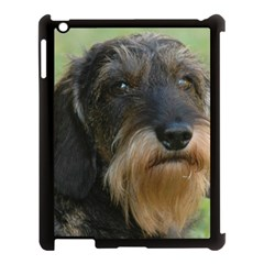 Wirehaired Dachshund Apple iPad 3/4 Case (Black) by TailWags