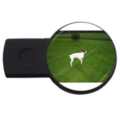German Shorthair Pointer Full USB Flash Drive Round (2 GB)  by TailWags
