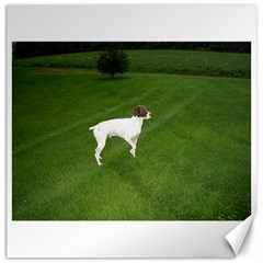German Shorthair Pointer Full Canvas 16  x 16   by TailWags