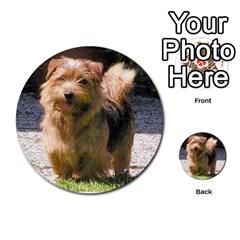 Norfolk Terrier Full Multi Purpose Cards (round)