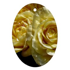 Yellow Roses Ornament (Oval)  by MoreColorsinLife