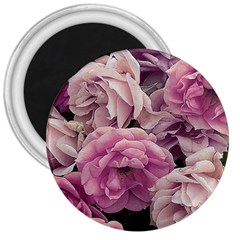 Great Garden Roses Pink 3  Magnets by MoreColorsinLife