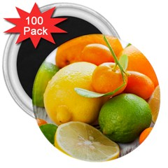 Citrus Fruits 3  Magnets (100 Pack) by emkurr