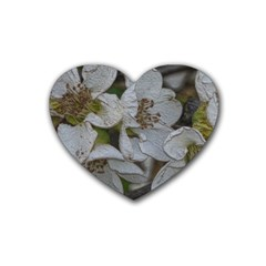 Amazing Garden Flowers 32 Heart Coaster (4 Pack)  by MoreColorsinLife