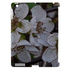 Amazing Garden Flowers 32 Apple Ipad 3/4 Hardshell Case (compatible With Smart Cover) by MoreColorsinLife