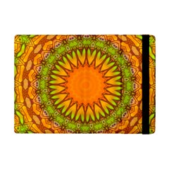 Kaleido Fun 07 iPad Mini 2 Flip Cases by MoreColorsinLife