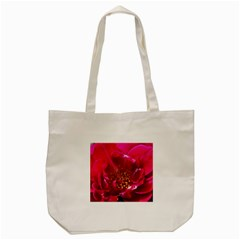 Red Rose Tote Bag (cream)  by timelessartoncanvas