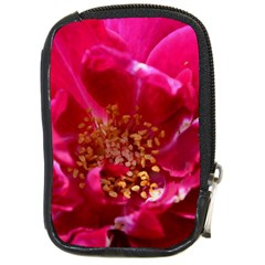Red Rose Compact Camera Cases by timelessartoncanvas