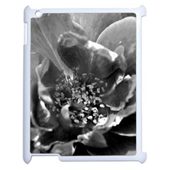 Black And White Rose Apple Ipad 2 Case (white) by timelessartoncanvas