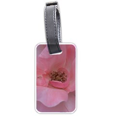 Pink Rose Luggage Tags (one Side)  by timelessartoncanvas