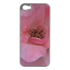 Pink Rose Apple Iphone 5 Case (silver) by timelessartoncanvas