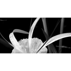 Exotic Black And White Flowers You Are Invited 3d Greeting Card (8x4)  by timelessartoncanvas