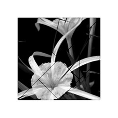 Exotic Black And White Flowers Acrylic Tangram Puzzle (4  X 4 ) by timelessartoncanvas