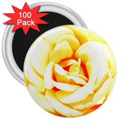 Orange Yellow Rose 3  Magnets (100 Pack) by timelessartoncanvas