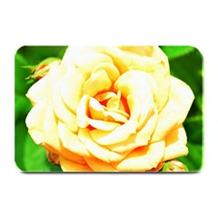 Orange Yellow Rose Plate Mats by timelessartoncanvas