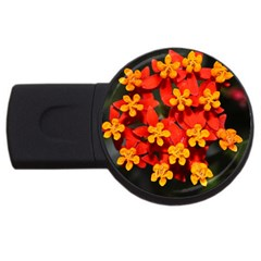 Orange And Red Weed Usb Flash Drive Round (2 Gb)  by timelessartoncanvas