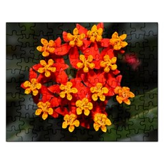 Orange And Red Weed Rectangular Jigsaw Puzzl