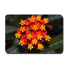 Orange And Red Weed Small Doormat