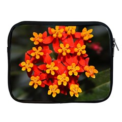 Orange and Red Weed Apple iPad 2/3/4 Zipper Cases by timelessartoncanvas
